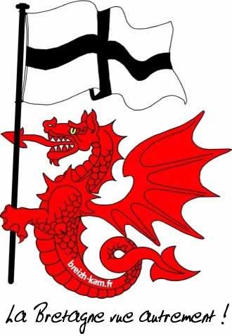 Logo, bannière de http://breizh-kam.fr en 330x478 px